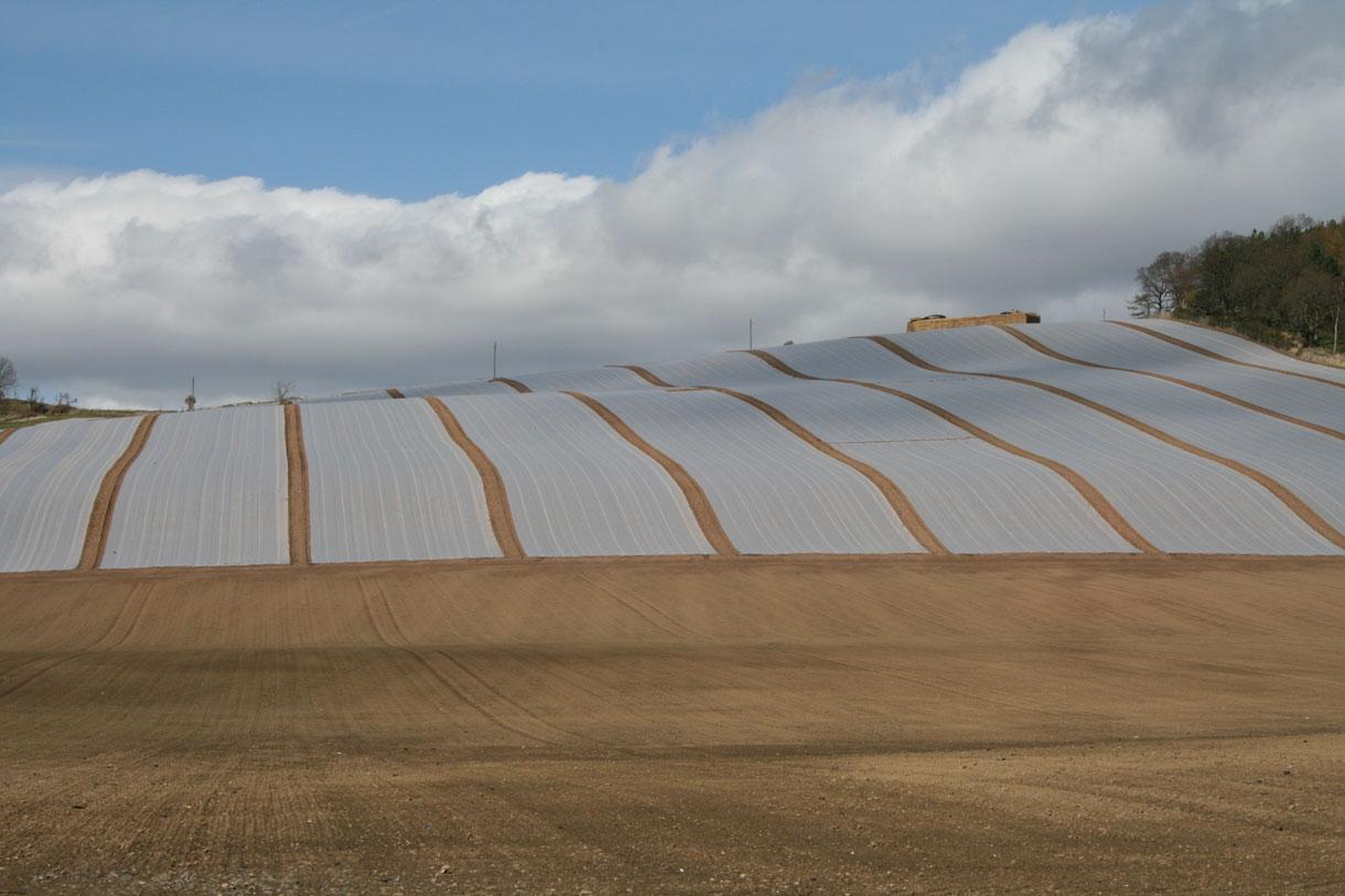 tessuto-non-tessuto-per-la-filtrazione-agricola-e-la-protezione-dei-campi